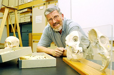 Bernard A. Wood Center for the Advanced Study of Hominid Paleobiology, Department of Anthropology, The George Washington University, Washington D.C., USA